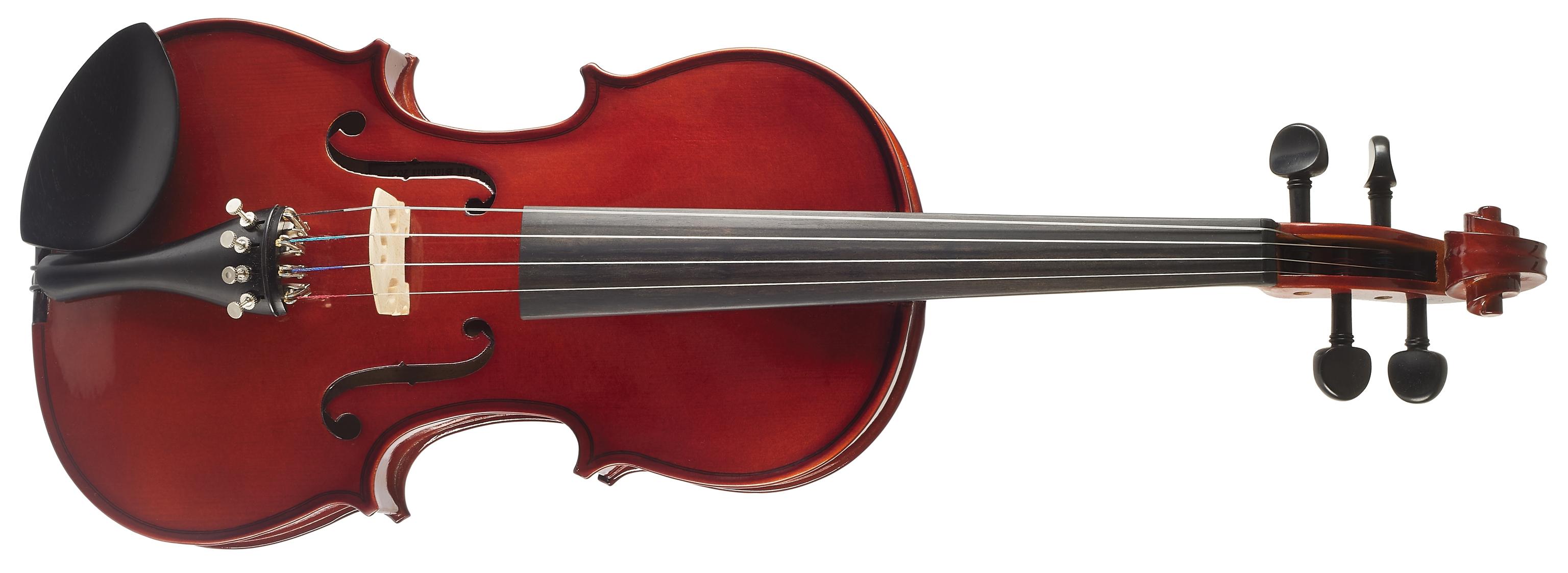 PIERRE MARIN Amadeus Violin Set 4/4