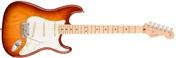 American Pro Stratocaster MN SSB ASH