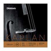 Kaplan vcl 4/4 M