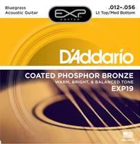 D'ADDARIO EXP19