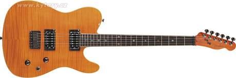 FENDER Custom Telecaster FMT HH RW AM Elektrická kytara