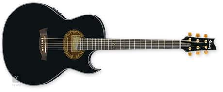 IBANEZ EP 5 BP Elektroakustická kytara