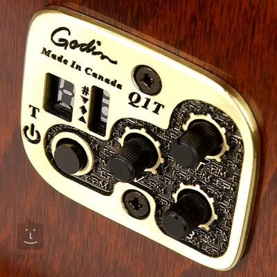 SEAGULL Performer CW MJ Flame Maple HG QI Elektroakustická kytara