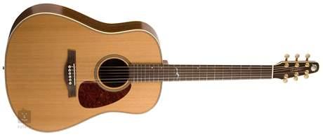 SEAGULL Artist Mosaic Akustická kytara