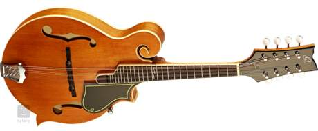 ORTEGA RMF50VY Akustická mandolína