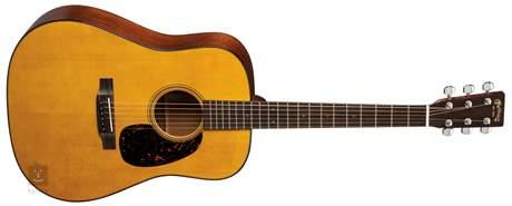 MARTIN D-16GT Akustická kytara