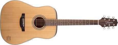 TAKAMINE GD20-NS Akustická kytara