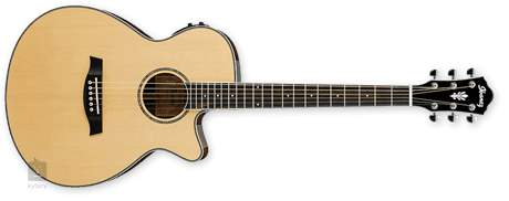 IBANEZ AEG 10II NT Elektroakustická kytara