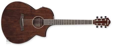 IBANEZ AEW40CD-NT Elektroakustická kytara