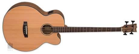 ESP LTD Tombstone JB-320E Elektroakustická baskytara
