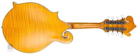PILGRIM VPM400 Akustická mandolína