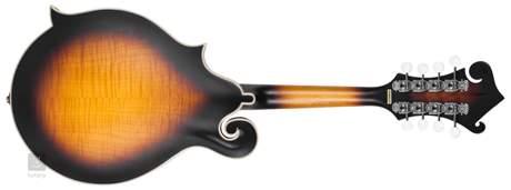 PILGRIM VPM400F Akustická mandolína