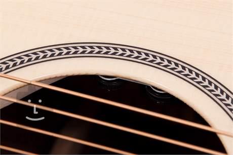 SEAGULL Artist Studio CW Deluxe Element  Elektroakustická kytara