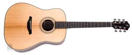 FURCH D 22-SR Akustická kytara