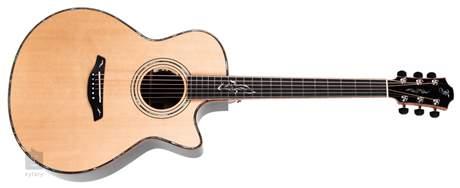 FURCH G 25-SR CUT Anthem Elektroakustická kytara