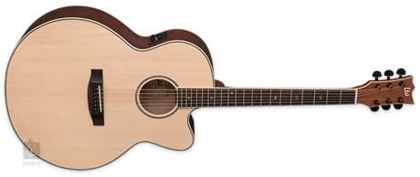 ESP LTD J-310E NS Elektroakustická kytara