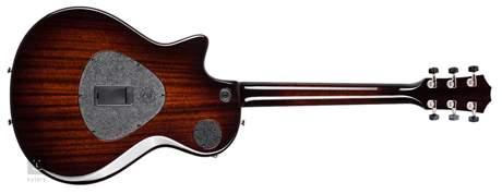 TAYLOR T5z Classic Special Edition Elektroakustická hybridní kytara