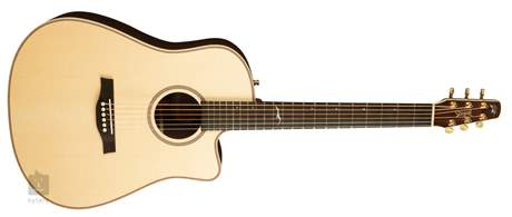 SEAGULL Artist Peppino Signature CW L.R.Baggs Elements Elektroakustická kytara