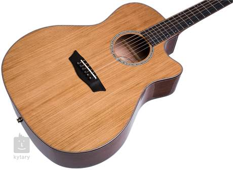 WASHBURN Woodline WLG110SWCEK-D-U Elektroakustická kytara