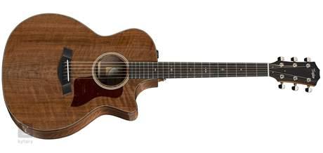 TAYLOR 524ce NAMM LTD Elektroakustická kytara