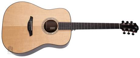 FURCH Yellow Plus D-SR Akustická kytara