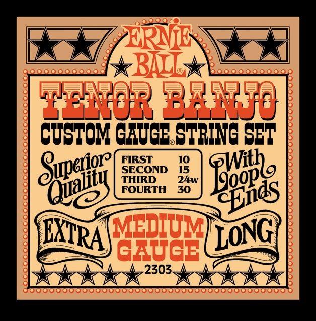 Ernie Ball Stainless Steel Tenor Banjo Medium