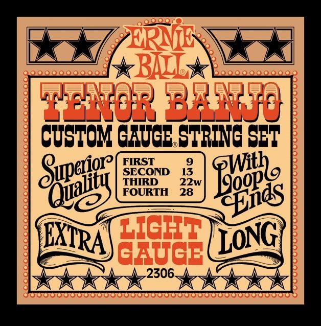 Ernie Ball Stainless Steel Tenor Banjo Light