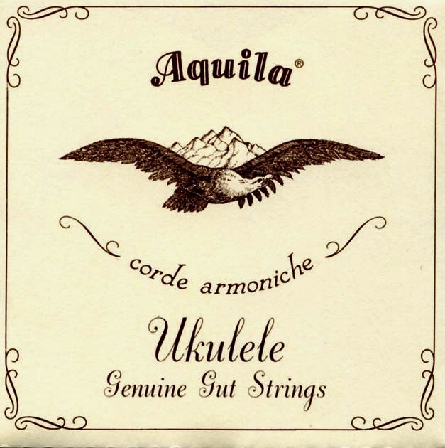 Fotografie Aquila 43U