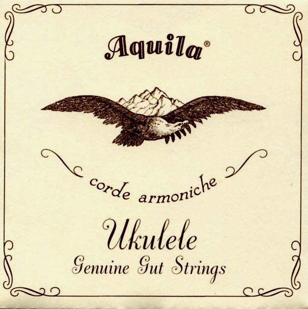 Aquila 1U