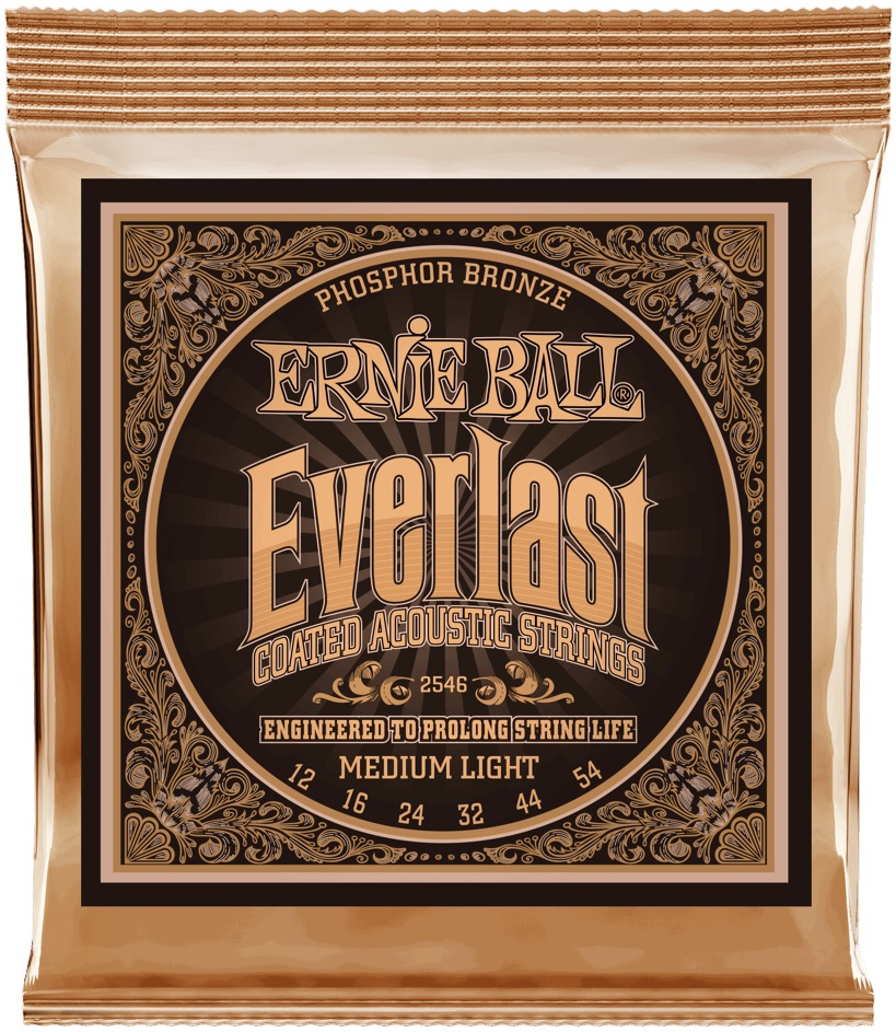 Ernie Ball Everlast Phosphor Bronze Medium Light