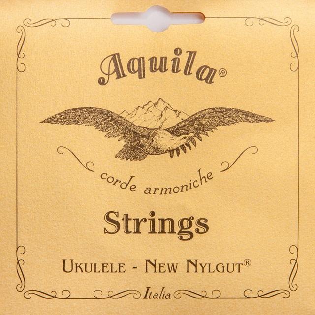 Aquila 21U