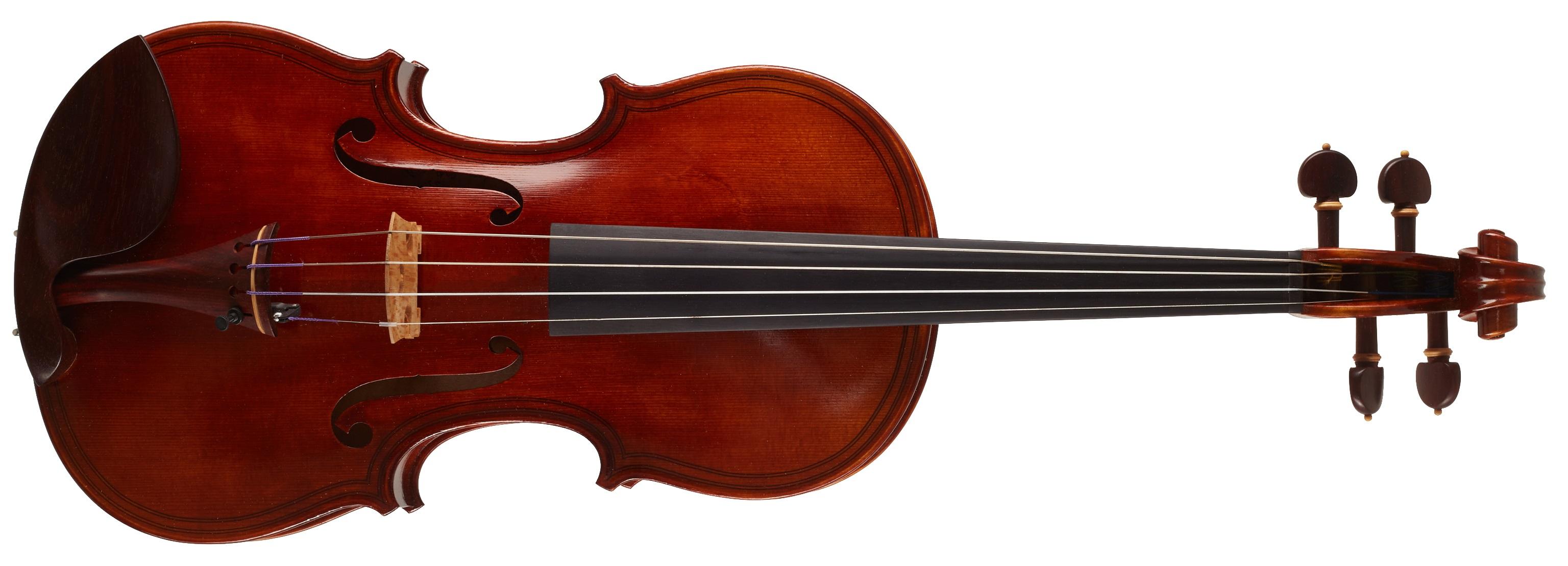 Maestro Instrument Petr Rácz Maggini inspired anno 2019