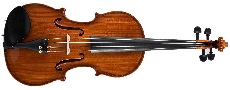 Strunal Schönbach Jiri Hodina Master violin