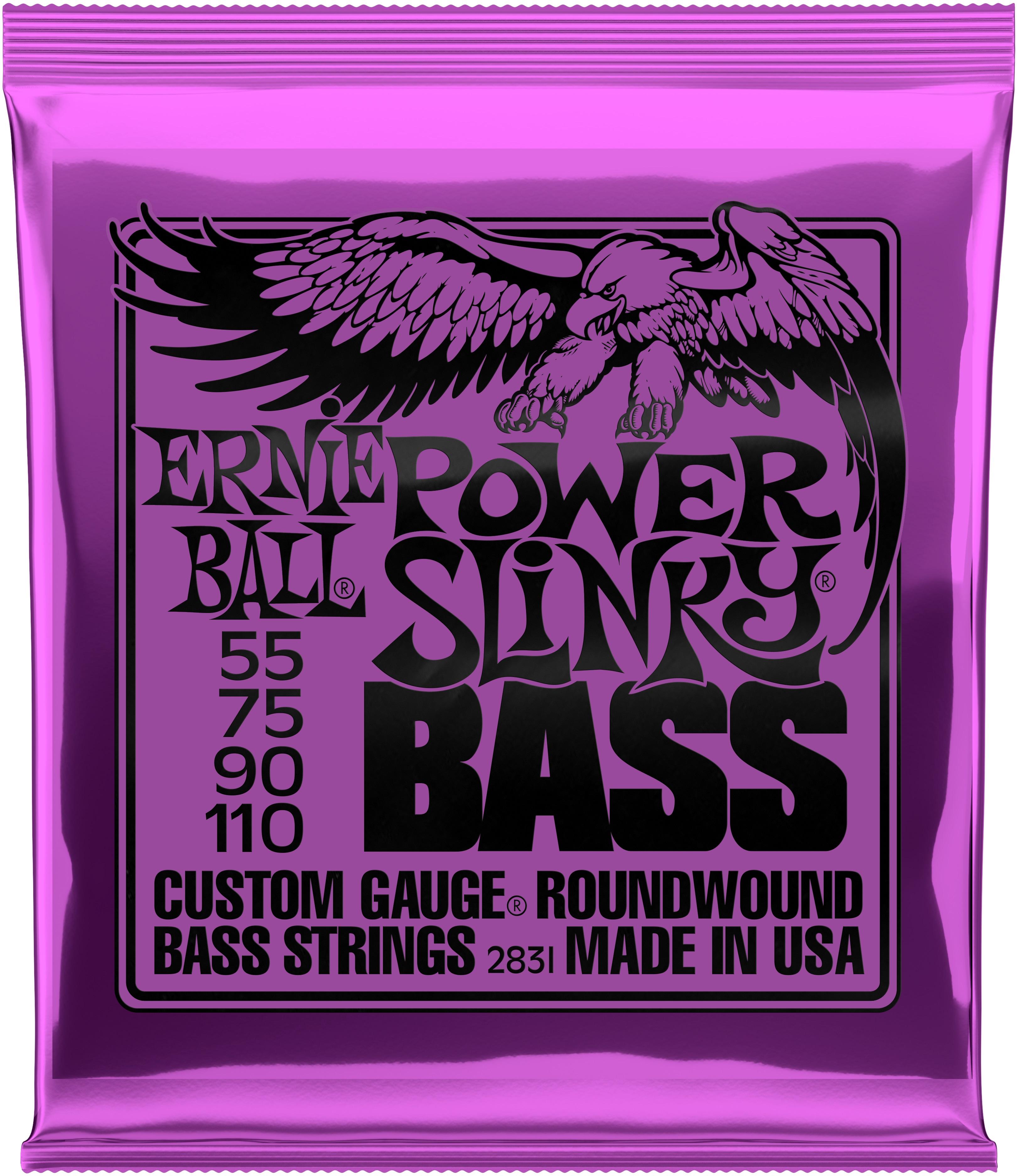 Ernie Ball 2831