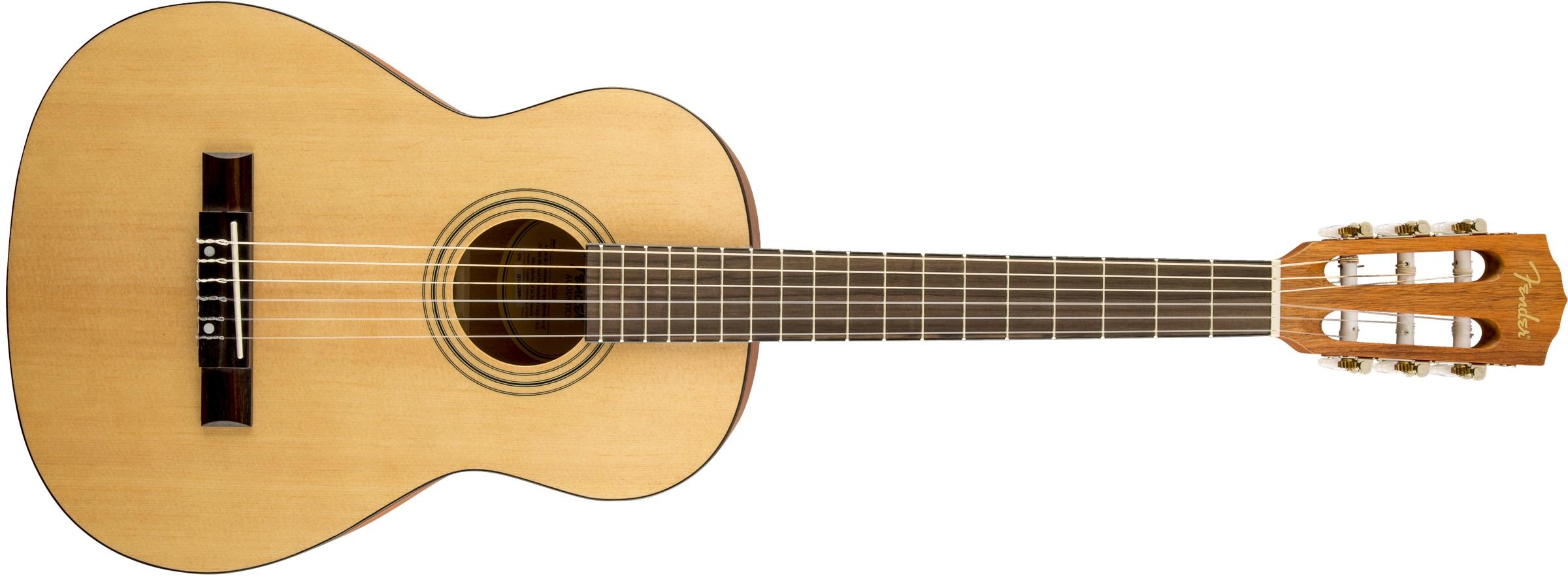 Fender ESC80 Educational